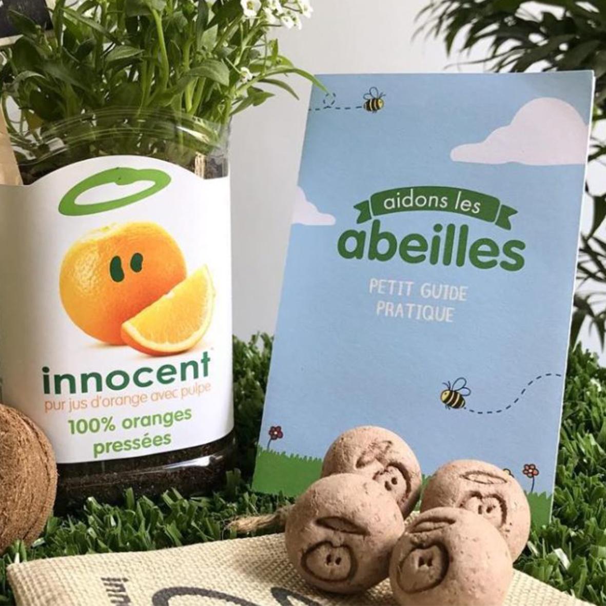 seedball_ecologique